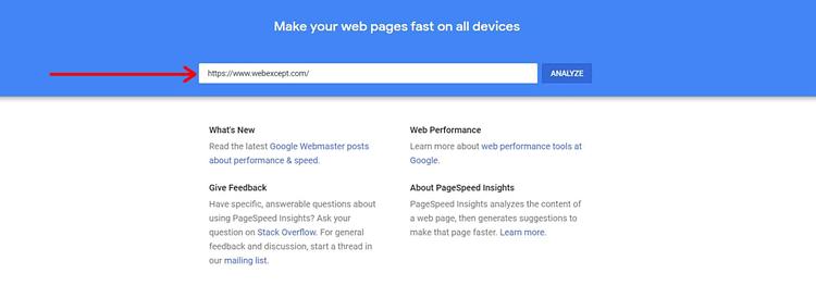 google insight test speed website
